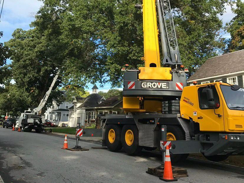 removing-tree-with-crane-and-bucket-truck